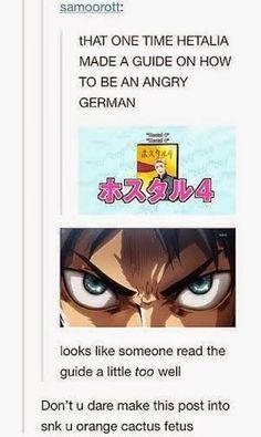 The Otaku Files: Meme Book: Attack On Titan (Shingeki no Kyojin) //ORANGE CACTUS FETUS I'M GONNA PISS THAT'S LITERALLY MY NEW INSULT FROM NOW ON