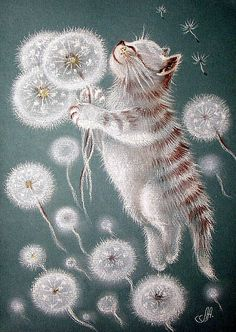 I love this cat and dandelion painting! кошки в одуванчиках