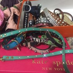 MORE, prices vary ask ? Leashes and collars all genuine leather and Swarovski Lulu jane  Accessories