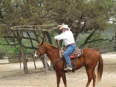 Best Dude Ranches In Texas For Vacation