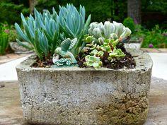Aldridge Gardens | Nature & Art | Hoover, Alabama