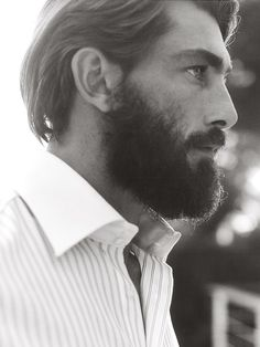 Patrick Petitjean - too short hair but the beard is fabulous. It starts naturally behind his ears.