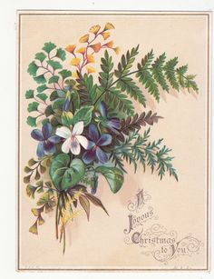 A Joyous Christmas To you Flowers Ferns Embossed Vict Card c 1880s | eBay