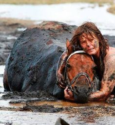 A woman's loyalty to her horse.  Nicole Graham spent three hours holding her horse's head above the tide after he got stuck in the mud at Avalon Beach in Australia. The 500kg horse, named Astro, was eventually freed with the help of a tractor and harness.