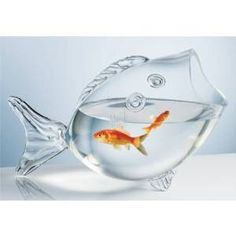 "http://amzn.to/1Gopn3C CLEAR FISH BOWL - CLEAR FISH SHAPED BOWL - $39.99 & FREE Shipping MADE OF QUALITY GLASS MATERIAL Measures approx: 14"" long 4"" Opening 14 "" long, 10 "" tall. 8"" wide This fish holds 12 cups"