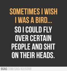 Sometimes I wish I was a bird... So I could fly over certain people and shit on their heads.