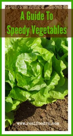 On Your Mark, Get Set, Grow: A Guide To Speedy Vegetables. Tips for Growing Homegrown Veggies, Fast. realfoodrn.com