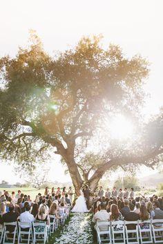 Stunning old oak ceremony idea + lighting