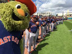 Astros World Series, George Springer, Softball, Baseball, Small Town Girl, Texans, Houston Astros, Boston, Celebs