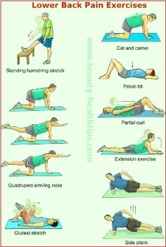 Why Do I Have Lower Back Pain Photos of Different type of Lower Back Pain Exercises