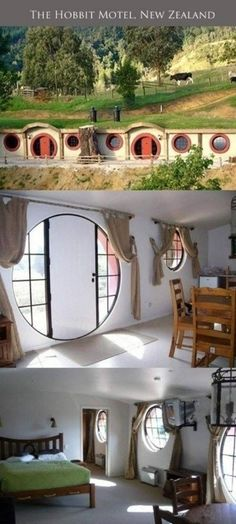 hobbit motels in new zealand- saaay whaaaat?? I'm gonna take all my nerdy friends to this and just like move in.