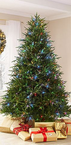 When it comes to picking out your Christmas tree, there are nearly endless options. If you want a live tree, you have numerous varieties to choose from. For artificial trees, you can get pre-lit or flocked or... The list goes on and on. Let Home Depot help you pick out which tree best suits your needs.