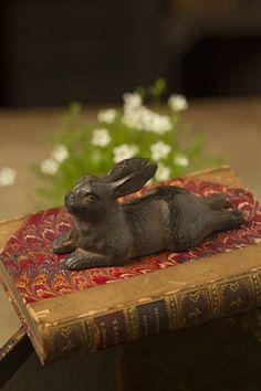 Cast Iron Rabbit by Vagabond Vintage Silly Rabbit, Bunny Rabbit, Woodlands Cottage, Year Of The Rabbit, Alice, Bunny Art, Funny Bunnies, Easter Table, Peter Rabbit