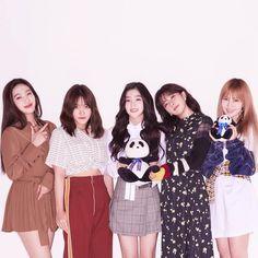 Joy, Yeri, Irene, Seulgi and Wendy the Red Velvet girls. Guys I have been into their music latley Wendy Red Velvet, Red Velvet Irene, Black Velvet, Kpop Girl Groups, Korean Girl Groups, Kpop Girls, K Pop, Ulzzang, Divas