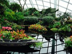 Singapur Klimahallen