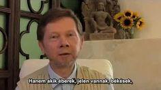 Eckhart Tolle, Meditation, People, Youtube, People Illustration, Youtubers, Folk, Youtube Movies, Zen