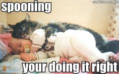 spooning with baby and cat