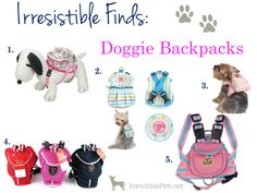 Irresistible Finds - Doggie Backpacks
