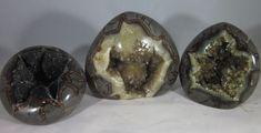 Premium Set of 3 Hollow Septarian Nodule Freeform Pieces from Utah