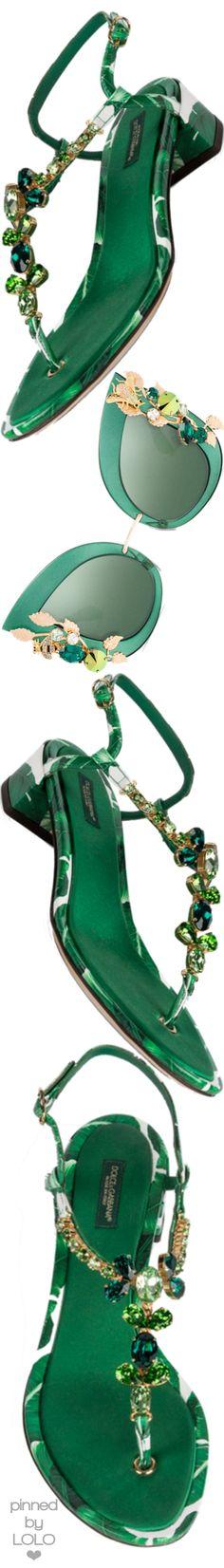 Dolce&Gabbana | LOLO❤︎