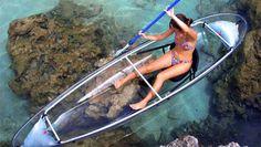 Wildlife Refuge See-Through Kayak Tour - Key West | Expedia