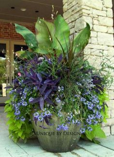 Front door pot idea! #ContainerGarden