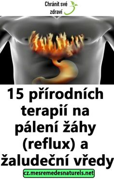 15 přírodních terapií na pálení žáhy (reflux) a žaludeční vředy Herbal Remedies, Natural Remedies, Maryland, Diabetes, Detox, Herbalism, Health Fitness, Middle Ages, Face