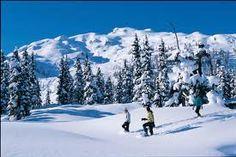 Where To Snowshoe in Utah