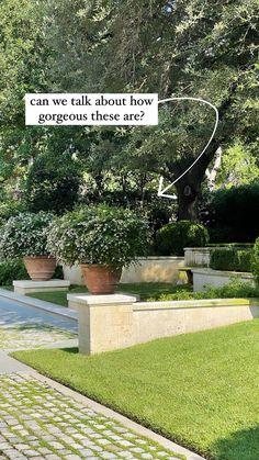 Stories • Instagram Planter Garden, Sidewalk, Canning, Instagram, Side Walkway, Walkway, Home Canning, Walkways, Plant Containers