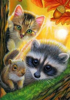 This would make a great gift for a cat squirrel or raccoon lover! Created with watercolor gouache and acrylics on professional archival watercolor paper. Signed dated and titled. Animals And Pets, Baby Animals, Cute Animals, Autumn Painting, Gouache Painting, Painting Art, 5d Diamond Painting, Cross Paintings, Cat Drawing