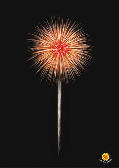 Firework - Graphis