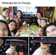 Best Memes, Funny Memes, Spanish Jokes, Humor Mexicano, Animal Memes, Laugh Out Loud, Funny Pictures, Lol, Baby Shark