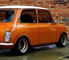 Orange you glad it's a mini?!