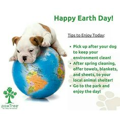 Happy Earth Day! What other tips do you have to share?