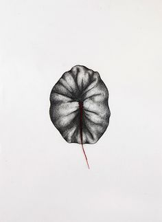 Rebecca D. Harris is an artist based in Marazion, Cornwall, UK who makes work about the body sometimes through the use of humour, science and textiles. Birth Art, Stitch Drawing, My Drawings, My Arts, Textiles, Artwork, Collages, Art Ideas, Art