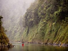 """""""Your Honour, I appear for the Whanganui River"""" A river gets legal standing … – The Northern Myth Sierra Club, Go Ride, Rough Day, Boat Tours, Wilderness, New Zealand, National Parks, Places To Visit, Things To Come"""