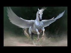 {{ Pegasus was a winged horse who sprung forth from the head of Medusa when Perseus decapitated her. Pegasus was also ridden by the hero Bellerophon when he went to kill the Chimera. Pegasus Tattoo, Fantasy Creatures, Mythical Creatures, Cavalo Wallpaper, Greek Mythological Creatures, Mythological Monsters, Horse Wallpaper, Hd Wallpaper, Wings Wallpaper