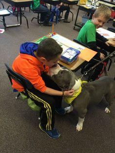 Dog at Clancy School
