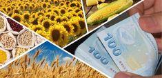 Bugün saat 18.00 itibariyle çiftçilere 651 milyon lira destek ödemesi yapılacak. Tarım ve Orman Bakanı Dr. Bekir Pakdemirli'nin yaptığı açıklamaya göre, yağlı tohumlu bitkiler, hububat, baklagil, zeytinyağı, dane mısır fark ödemeleri ilemazot, gübre ve fındık alan bazlı gelir desteği kapsamında 651 milyon lira bugün saat 18.00'den sonra çiftçilerin hesabına yatırılacak. Ödenecek destekler – Yağlı tohumlu […]   #B Voss Bottle, Water Bottle, Drinks, Drinking, Beverages, Drink, Beverage, Cocktails