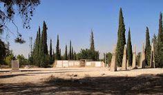 """Kever ha-Maccabim"" (""The Maccabeans Tomb"")– Google Картыhttps://www.google.ru/maps/place/%22Kever+ha-Maccabim%22+(%22The+Maccabeans+Tomb%22)/@31.9286451,34.9943948,3a,75y/data=!3m5!1e2!3m3!1s-dXbrYLMgJVw%2FUmb8qaWb5CI%2FAAAAAAAAs7A%2FNlnIzRzbzjo!2e4!3e12!4m7!1m4!3m3!1s0x1502ccfdf6753809:0xd3a65effee51cf1e!2s%22Kever+ha-Maccabim%22+(%22The+Maccabeans+Tomb%22)!3b1!3m1!1s0x1502ccfdf6753809:0xd3a65effee51cf1e"