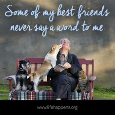 never say a word