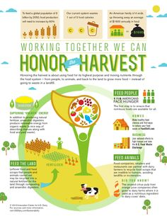 DairyGood.org | Honoring the Harvest: How Dairy Farmers Transform Waste