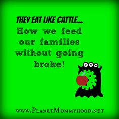 How 2 large family mom's feed their families without going broke! http://planetmommyhood.net/2013/08/02/they-eat-like-cattle-how-we-feed-our-families-without-going-broke/