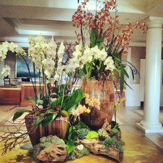 Lobby ideas for orchids, succulents and branch elements