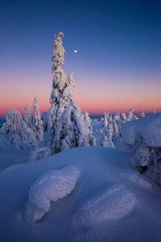Lapland Moonrise by Didier Lanore Livaara Tunturi - Lapland - Finland. Sky Landscape, Winter Landscape, Landscape Photos, Landscape Photography, Cool Landscapes, Beautiful Landscapes, Finland Travel, Lapland Finland, Tour Around The World