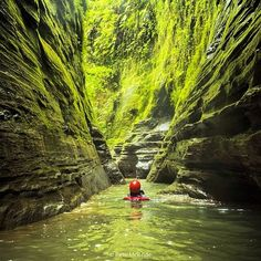 Exploring a secret canyon off Fiji's Navua river — one of the longest tropical slot canyons in the world. It is also one of the only regions in the South Pacific protected from commercial mineral extraction