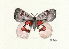 Pink Butterfly ORIGINAL WATERCOLOR PAINTING by GrowCreativeShop