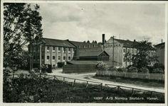 Hedmark fylke Hamar Uvanlig med nærbilde A/S Norrøna Skofabrik  Utg Normann Postgått 1931