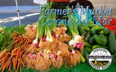 Shopping Should be an Experience – the Corona del Mar Farmer's Market