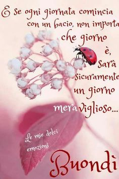 Holidays And Events, Good Morning, Quotes, Cards, Monsters, Frases, Smile, Buen Dia, Good Night